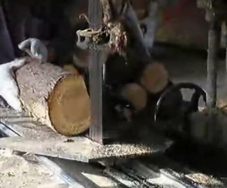 高精度带锯推盘原木多片锯木工机械